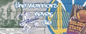 Bandeau Warriors (1)